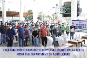 Beneficiaries Receive Free Inbred Pay Seeds